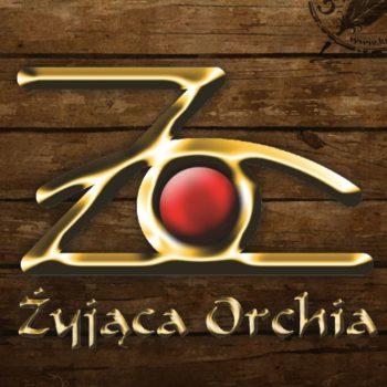 Żyjąca Orchia